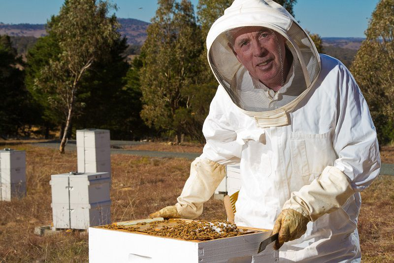 John-Grubb-Beekeeper-0101