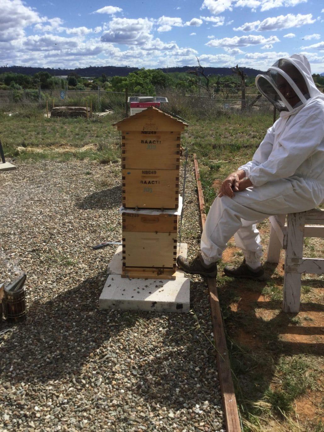 2Q Flow hive