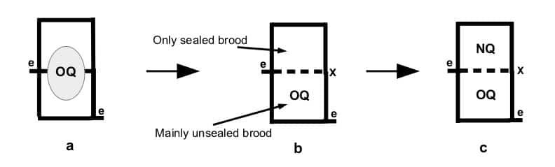 Sequential double queening