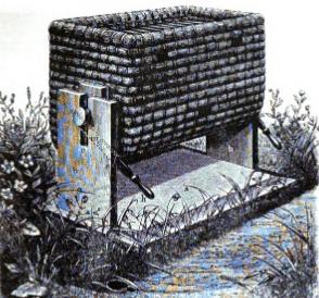 Gravenhorst-2