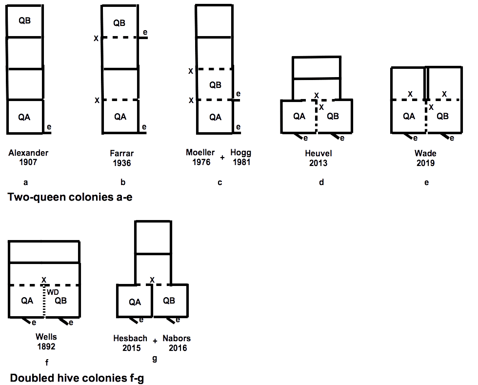 All-2Q-setups-1