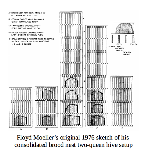 Flloyd Moeller's original 1976 drawing of CBN two-queen setup