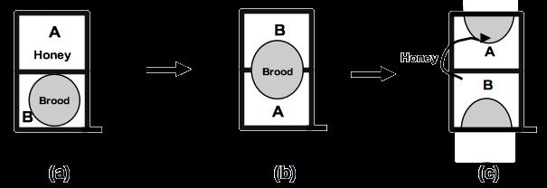 Figure-10-Brood-box-reversal